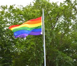 Pride Flag at Didcot Civic Hall